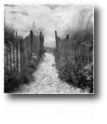 Weathered Path